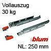 250 mm Blum Tandem Vollauszug 30 kg 560H2500C ohne Dämpfung 250 mm